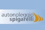 Fabio Spigarelli Autonoleggio